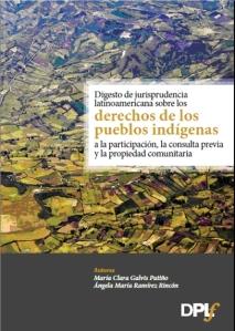 Digesto jurisprudencia indigena